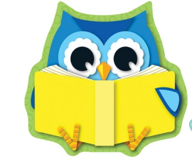reading owl reduced